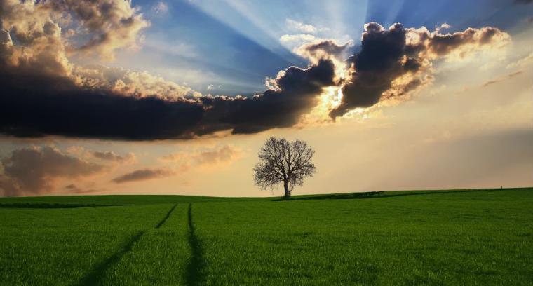"""II Encontro Nacional do Colégio de Engenharia Agronómica dedicado ao tema """"Alterações Climáticas e Agricultura"""" – dias 28 e 29 de setembro em Vila Real"""